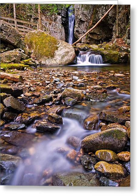 Falls Of Song On Shannon Brook Greeting Card by Jeff Sinon