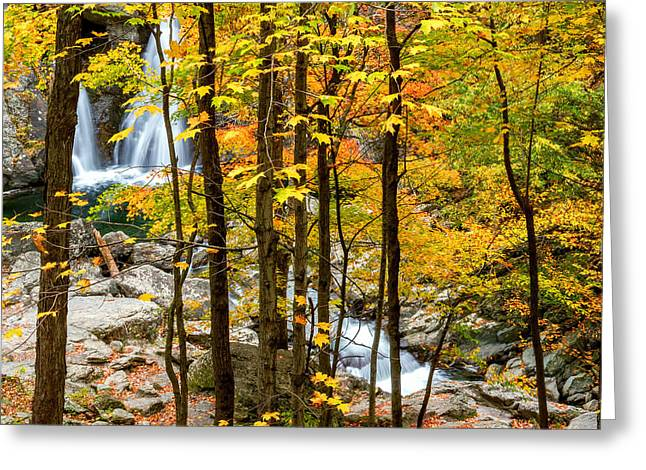 The Berkshires Greeting Cards - Falls Thru The Forest Square Greeting Card by Bill  Wakeley