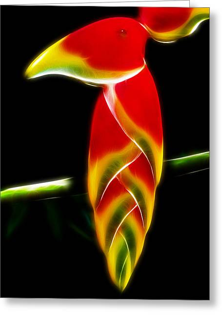 Parrot With Flower Greeting Cards - False Bird of Paradise Greeting Card by Carlos Vieira