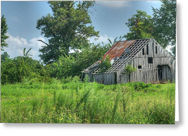 Tin Roof Greeting Cards - Family Barn 1 Greeting Card by Douglas Barnett