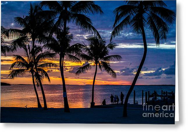 Isla Morada Greeting Cards - Family Journey Into the Night Greeting Card by Rene Triay Photography