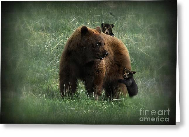 Family Outing Greeting Card by Wildlife Fine Art