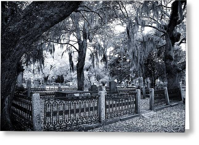Historic Cemetery Greeting Cards - Family Plot Greeting Card by John Rizzuto