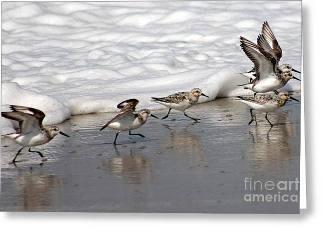 Family Stroll Greeting Card by Bob Hislop