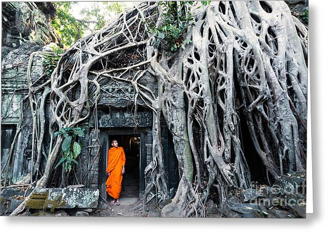 Wat Angkor Greeting Cards - Famous big tree inside Ta Phrom temple - Angkor - Cambodia Greeting Card by Matteo Colombo