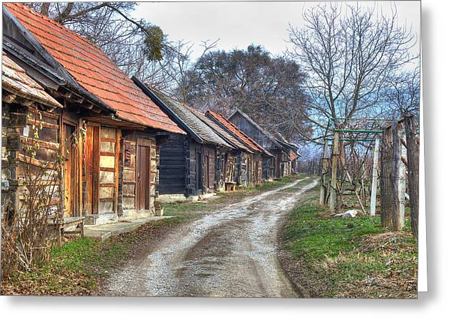 Shack Greeting Cards - Famous Traditional Wine Road With Cottagres Greeting Card by Dalibor Brlek