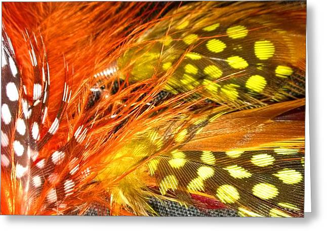Dot Jewelry Greeting Cards - Fancy Feathers Greeting Card by Catherine Ratliff