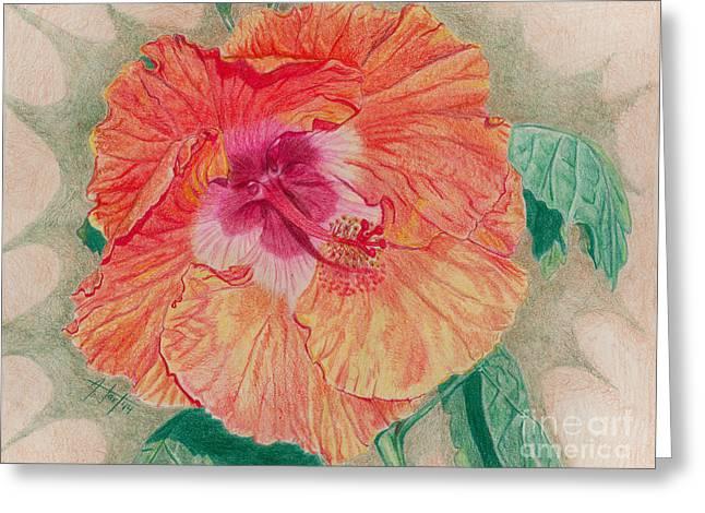 Stamen Drawings Greeting Cards - Fancy Hibiscus Greeting Card by Audrey Van Tassell