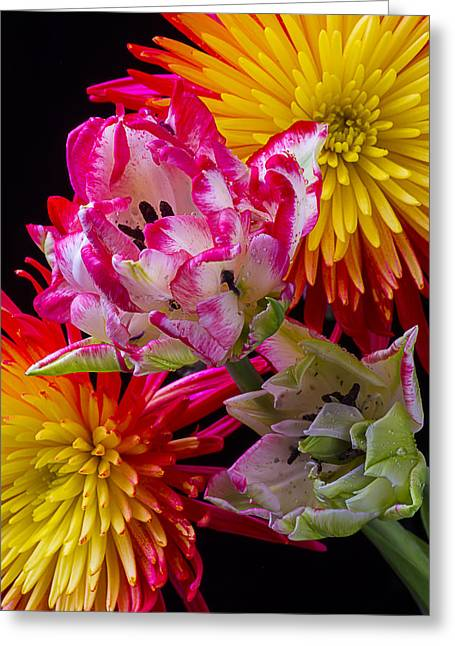 Rain Drop Greeting Cards - Fancy Tulips and Spider Mums Greeting Card by Garry Gay