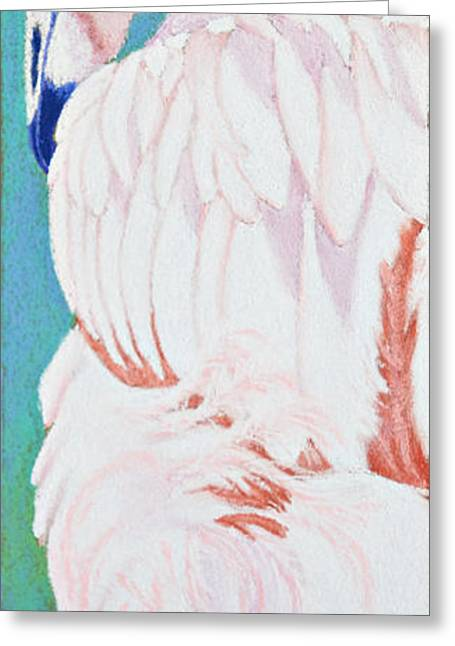 Fish Pastels Greeting Cards - Fandango II Flamingo Greeting Card by Tracy L Teeter