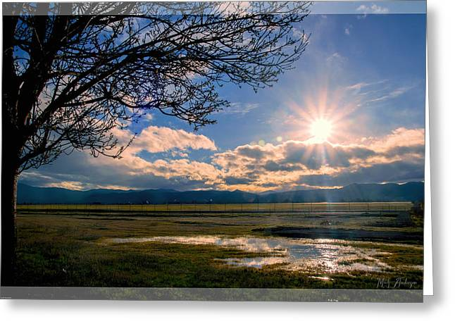 Mick Anderson Greeting Cards - Fantasy Afternoon Greeting Card by Mick Anderson