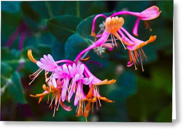Fantasy Flowers Greeting Card by Omaste Witkowski