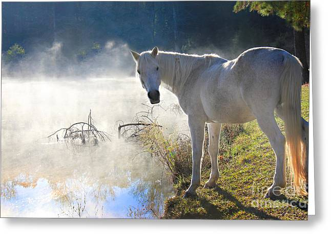 Fabled Greeting Cards - Fantasy Fog Greeting Card by Leslie Kirk