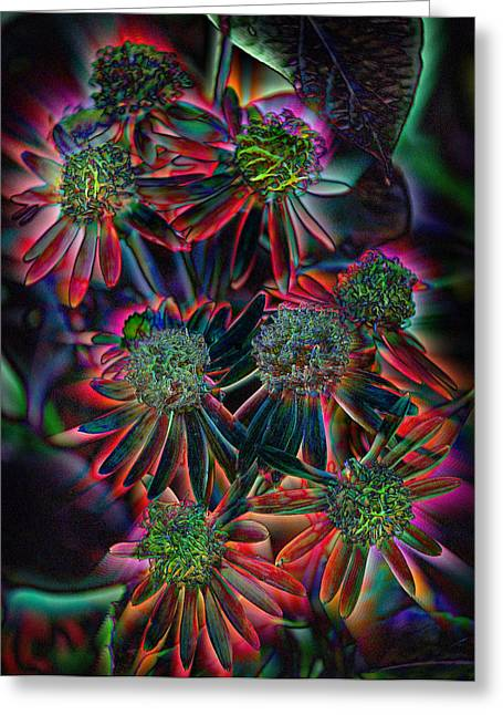 Abstracted Coneflowers Greeting Cards - Fantasy garden Greeting Card by Nanette Emerle