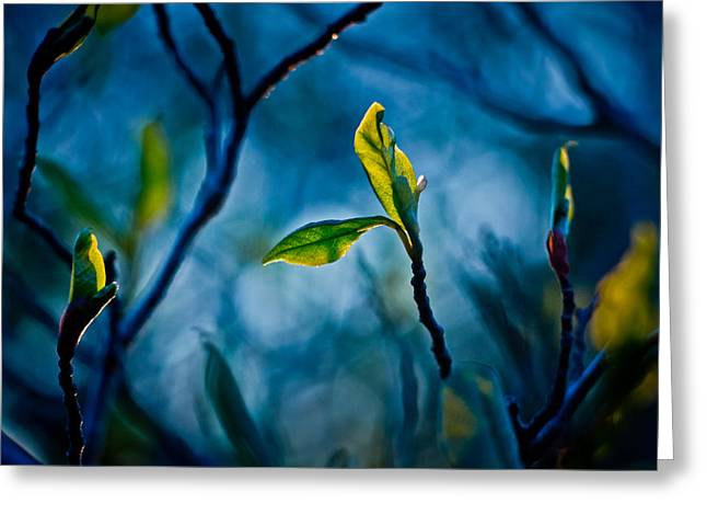 Blue And Green Greeting Cards - Fantasy in Blue Greeting Card by Linda Unger