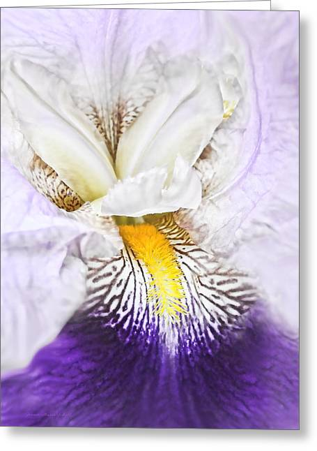 White Beard Greeting Cards - Fantasy Purple Iris Flower Greeting Card by Jennie Marie Schell