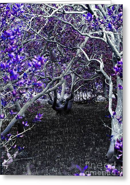 Mangrove Forest Greeting Cards - Fantasywood Greeting Card by Fabian Roessler