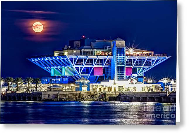 Tampa Bay Greeting Cards - Farewell Moon Greeting Card by Marvin Spates