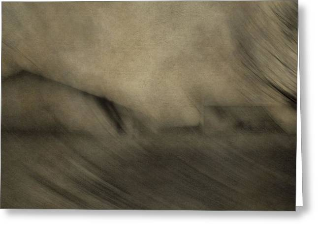 Hair Abstract Art Greeting Cards - Farm Abstract Greeting Card by Dan Sproul