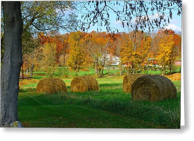 Farm - Autumn Harvest Greeting Card by Paul Ward