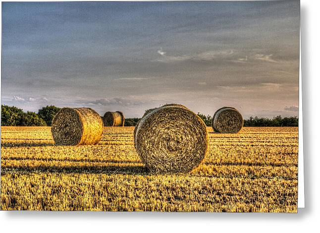 Farmers Field Greeting Cards - Farm Bales Greeting Card by David Pyatt