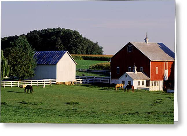 Horse Images Greeting Cards - Farm, Baltimore County, Maryland, Usa Greeting Card by Panoramic Images
