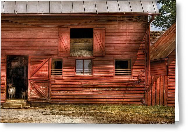 Old Barns Greeting Cards - Farm - Barn - Visiting the Farm Greeting Card by Mike Savad