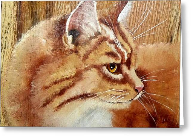 Orange Tabby Paintings Greeting Cards - Farm Cat on Rustic wood Greeting Card by Debbie LaFrance