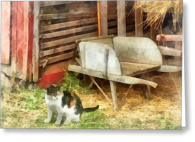 Farm Cat Greeting Card by Susan Savad