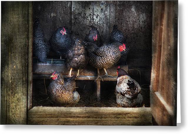 Plymouth Rock Greeting Cards - Farm - Chicken - The Hen House Greeting Card by Mike Savad