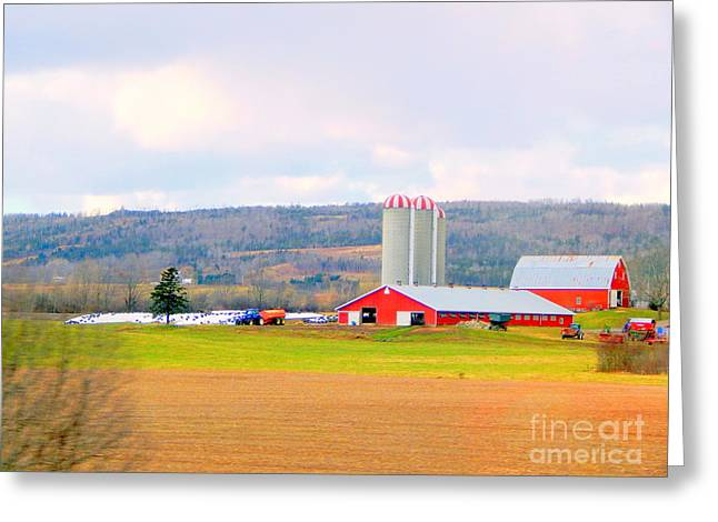 Annapolis Valley Greeting Cards - Farm Country Greeting Card by Karen Cook