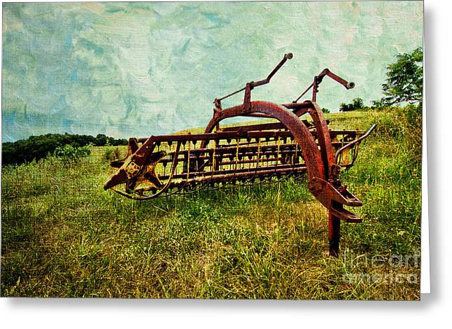 Hay Rake Greeting Cards - Farm Equipment in a field Greeting Card by Amy Cicconi