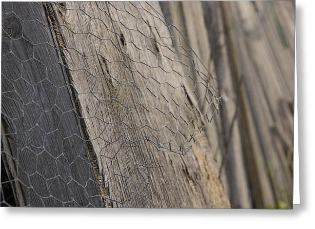 Mending Fence Greeting Cards - Farm Fence Greeting Card by Zoltan Tougas
