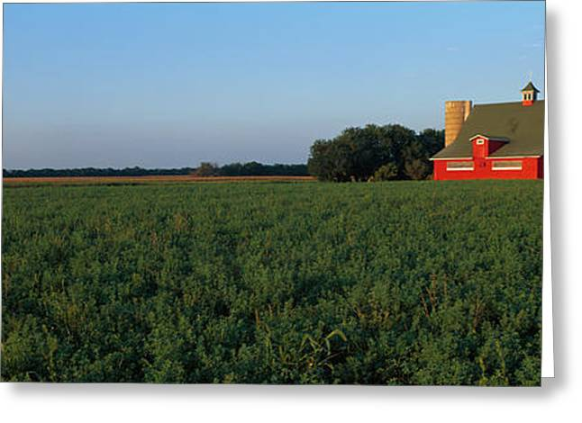 Out-building Greeting Cards - Farm Fields Stelle Il Usa Greeting Card by Panoramic Images