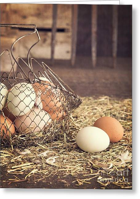 Agricultural Greeting Cards - Farm Fresh Eggs Greeting Card by Edward Fielding