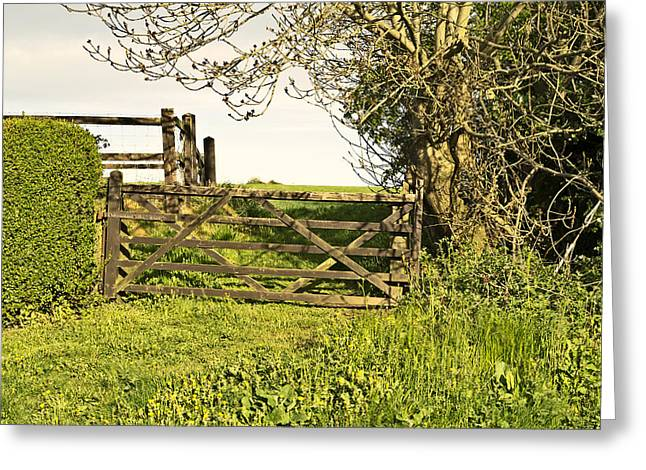 Niel Morley Greeting Cards - Farm Gate Greeting Card by Niel Morley