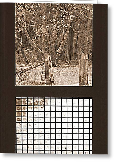 Screen Doors Greeting Cards - Farm House Door Way  Greeting Card by Lynn Griffin