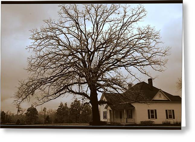 Limbs Greeting Cards - Farm House Greeting Card by Lisa Wooten