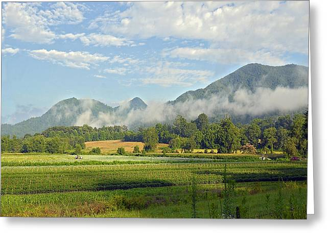 Farm in the Valley Greeting Card by Susan Leggett