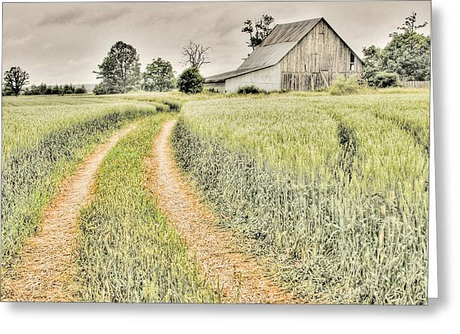 Farm On Diamondview Road Greeting Card by Rob Huntley