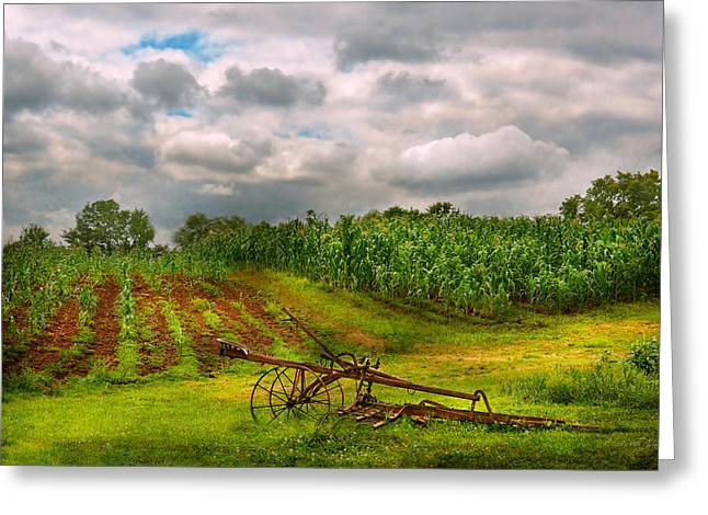 Hdr Landscape Greeting Cards - Farm - Organic farming Greeting Card by Mike Savad