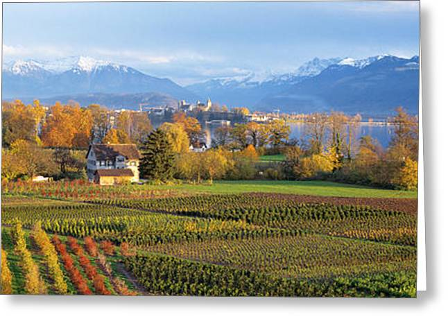 Orchard Greeting Cards - Farm, Rapperswil, Zurich, Switzerland Greeting Card by Panoramic Images