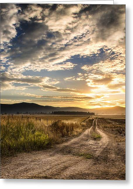 Wheat Field Sunset Print Greeting Cards - Farm Road Greeting Card by Jess Williams