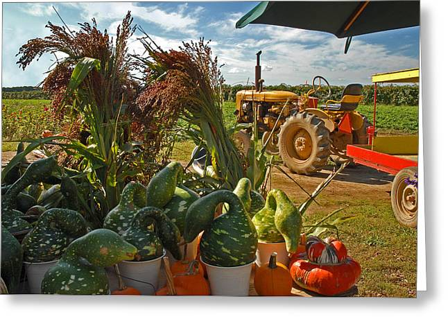 Farmstand Greeting Cards - Farm Stand Harvest Greeting Card by Alida Thorpe