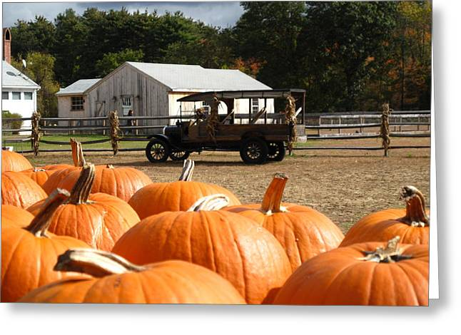 Concord Greeting Cards - Farm Stand Pumpkins Greeting Card by Barbara McDevitt