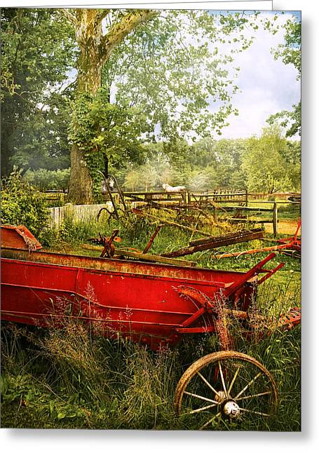 Horse Pulling Wagon Greeting Cards - Farm - Tool - A rusty old wagon Greeting Card by Mike Savad