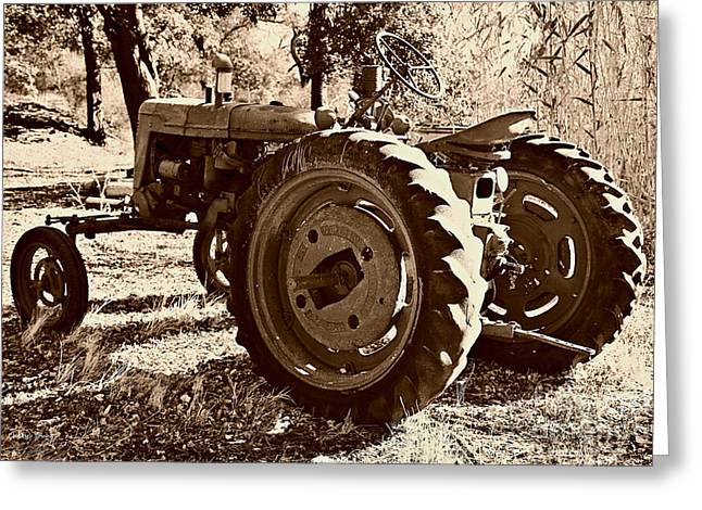 Mccormicks Farm Greeting Cards - Farmall 4 Greeting Card by Cheryl Young