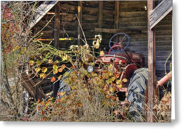 Wooden Shed Greeting Cards - Farmall Find Greeting Card by Benanne Stiens