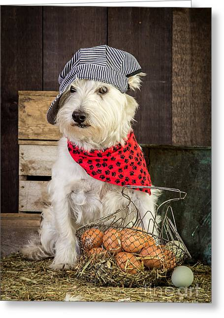 Bandana Greeting Cards - Farmer Dog Greeting Card by Edward Fielding