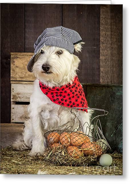Farmer Dog Greeting Card by Edward Fielding